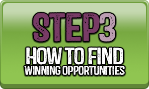 Step 3 How To Find Winning Opportunities
